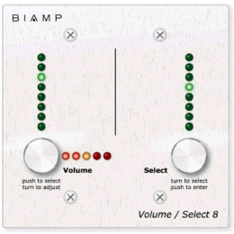Biamp 2G Package Двойная накладная коробка для Volume/Select 8